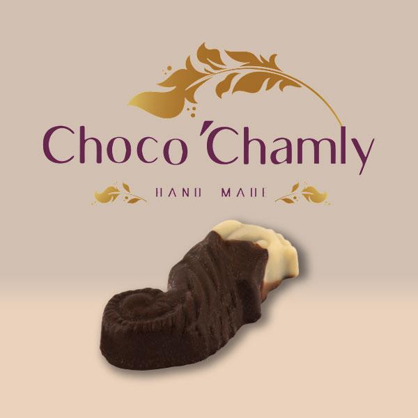 شکلات اسب دریایی
